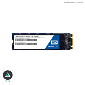 حافظه اس اس دی وسترن دیجیتال 250 گیگابایت m.2